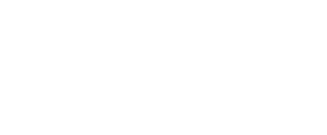 Digital-Stewards Wit logo